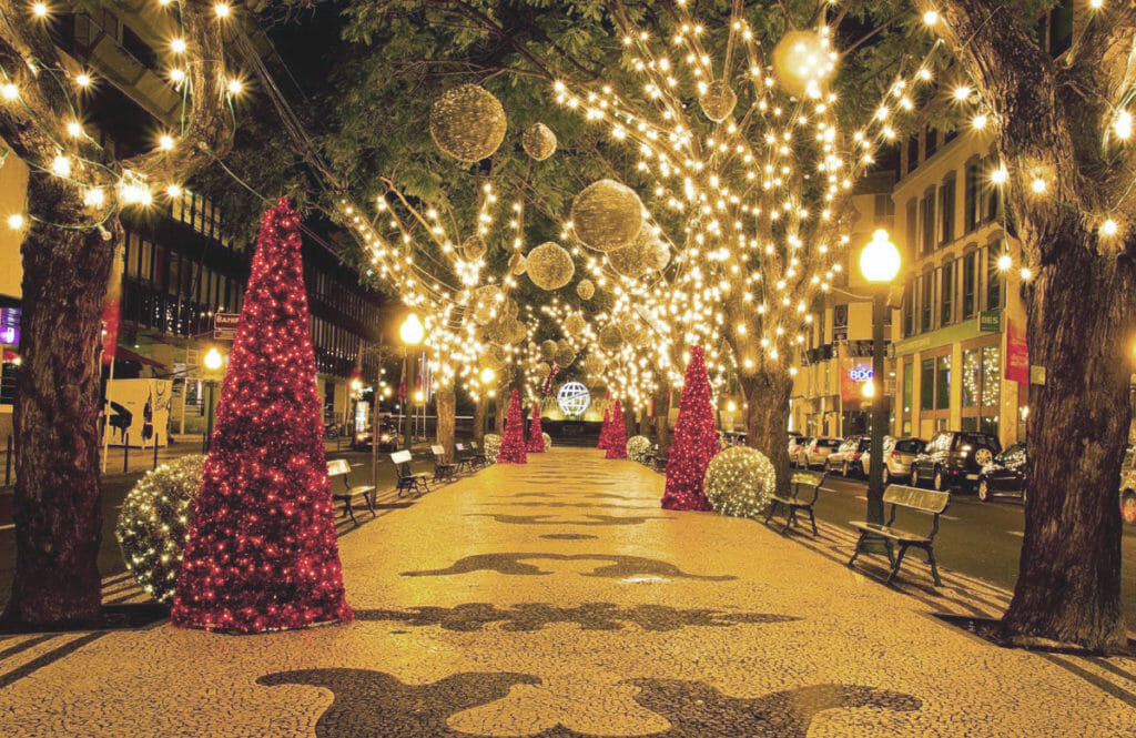 Commercial Christmas Lights.Commercial Atlanta Christmas Lighting